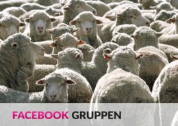 Facebook Gruppen: Mehr Mitglieder und Interaktion