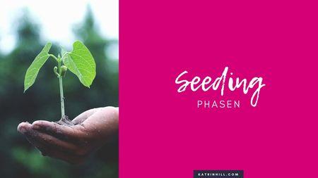 Erfolgreiches Seeding auf Facebook